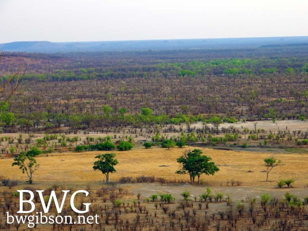 Hwange View