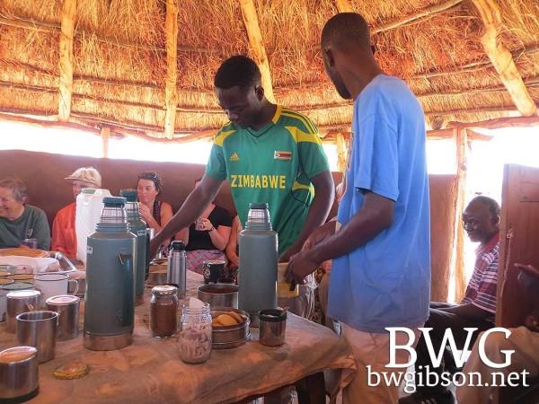 African Bush Tea